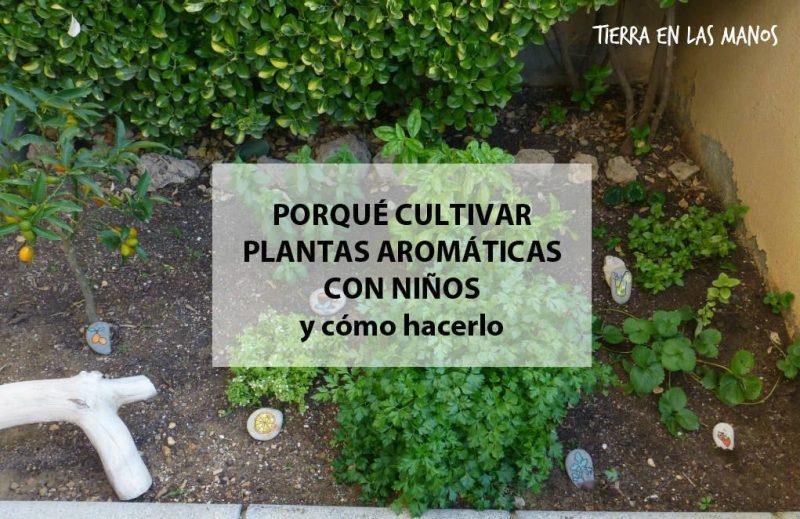 Actividades en el jard n terraza balc n tierra en - Jardin de aromaticas ...