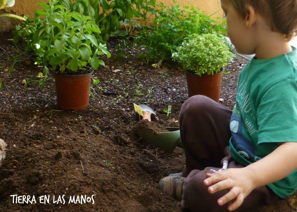 preparando jardín plantas aromáticas